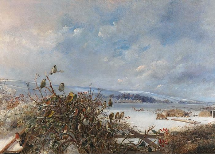 Birds Of A Feather Greeting Card by  Charles Henry Clifford  Baldwyn