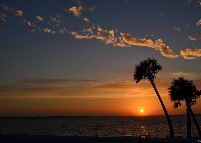 20120502 Greeting Card featuring the photograph 0502 Palms With Sunrise Colors On Santa Rosa Sound by Jeff at JSJ Photography