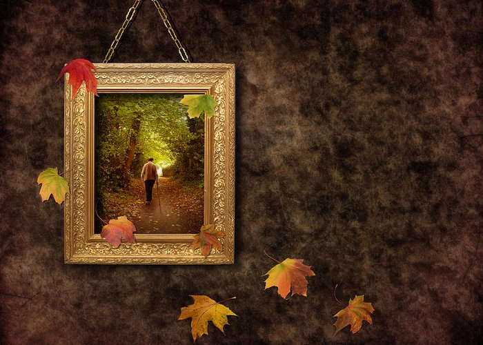 Autumn Greeting Card featuring the photograph Autumn Frame by Amanda Elwell