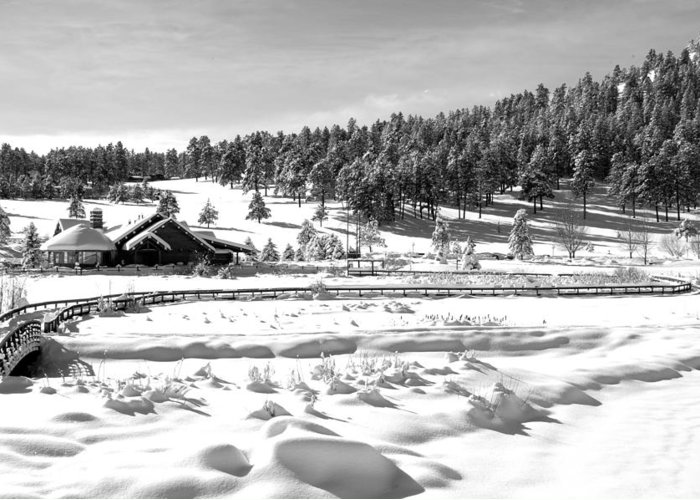 Lake Greeting Card featuring the photograph Evergreen Lake House Winter by Ron White