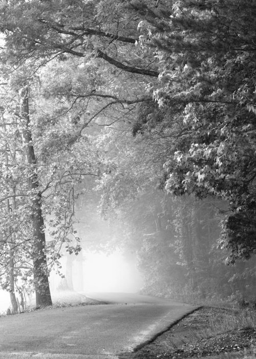 Cades Cove Greeting Card featuring the photograph Into The Fog by Andrew Soundarajan