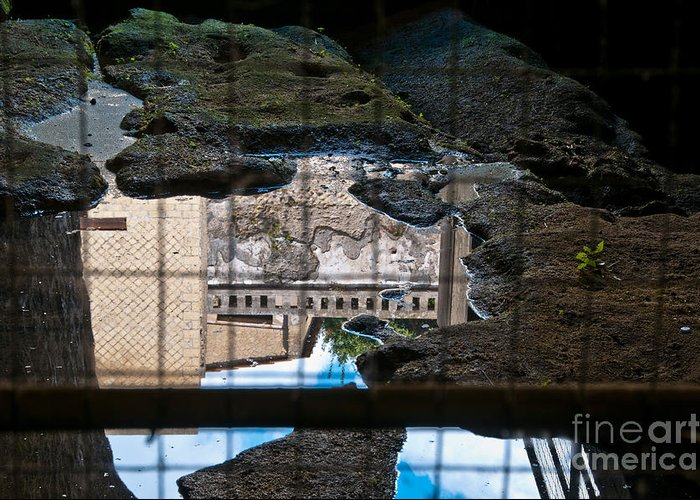 Herculaneum Greeting Card featuring the photograph Reflections by Marion Galt