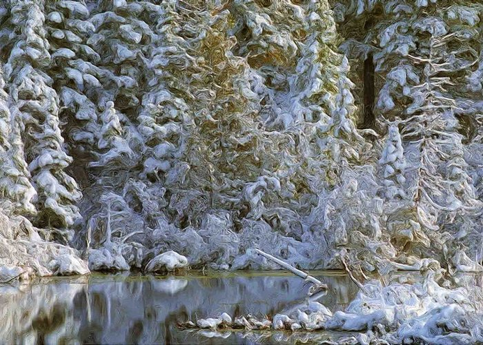 Winter Landscape Image Of Snow Covered Trees Reflecting In A Creek Greeting Card featuring the photograph Winter Scene by Pat Now