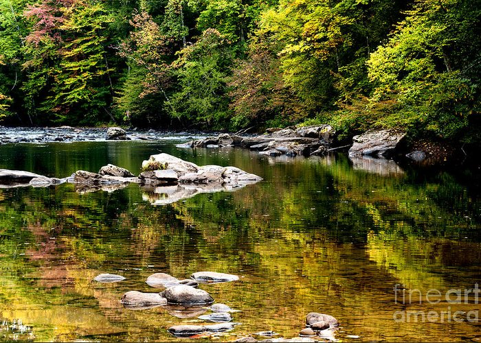 Williams River Greeting Card featuring the photograph Williams River Autumn by Thomas R Fletcher