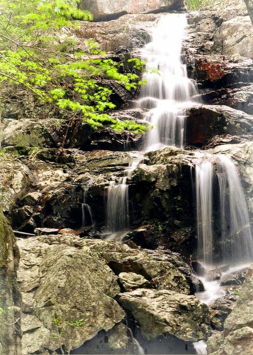 Waterfall Greeting Card featuring the photograph 1201 by Marty Koch