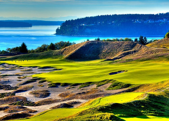 Chambers Bay Golf Course Greeting Card featuring the photograph #14 At Chambers Bay Golf Course - Location Of The 2015 U.s. Open Tournament by David Patterson