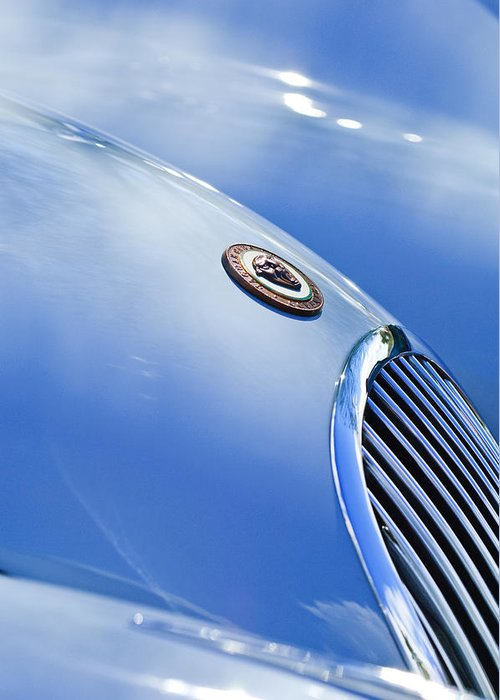 1951 Jaguar Grille Emblem Greeting Card featuring the photograph 1951 Jaguar Grille Emblem by Jill Reger