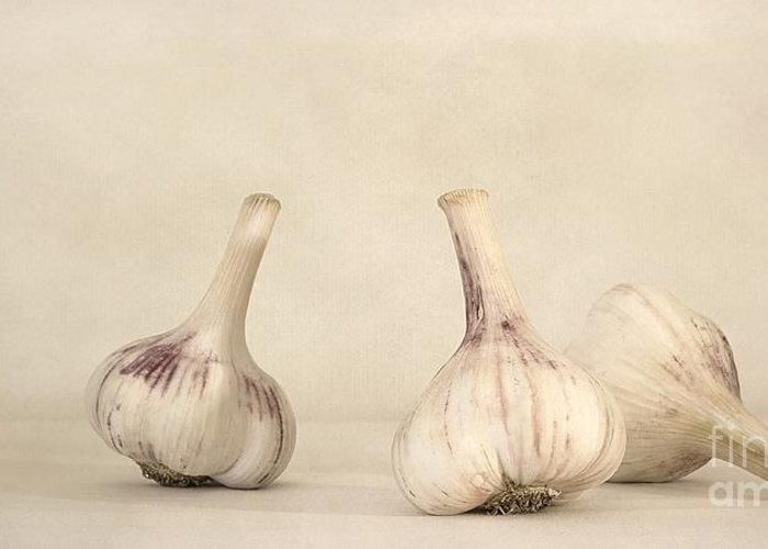 White Greeting Card featuring the photograph Fresh Garlic by Priska Wettstein