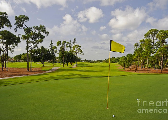 Florida Greeting Card featuring the photograph Golf Course by M Cohen