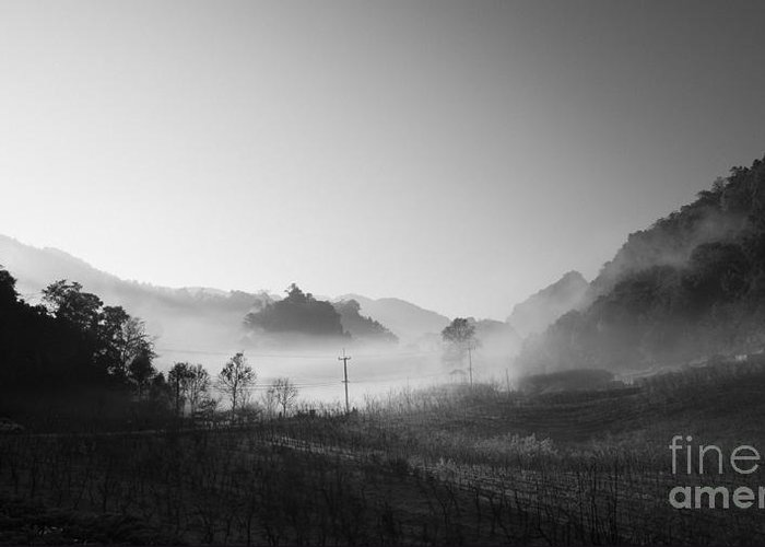 B&w Greeting Card featuring the photograph Mist In The Valley by Setsiri Silapasuwanchai