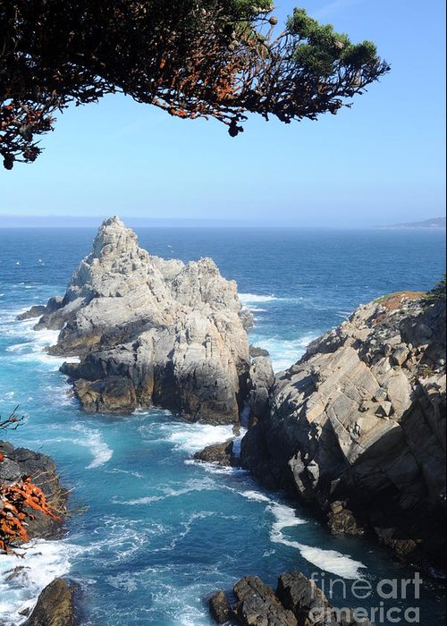 Point Lobos Greeting Card featuring the photograph Point Lobos Number Four by Catherine Lau