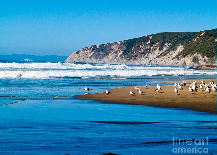 Pt Reyes Greeting Card featuring the photograph Pt Reyes National Seashore by Bill Gallagher