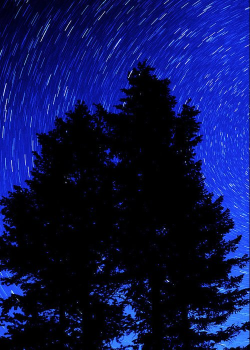 Tree Greeting Card featuring the photograph Star Trails In Night Sky by Lane Erickson