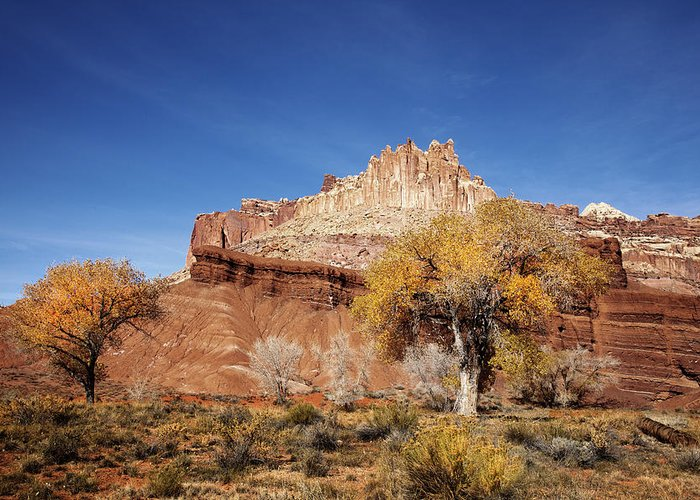 Capitol Reef National Park Greeting Card featuring the photograph Capitol Reef National Park Cathedral Valley by Mark Smith