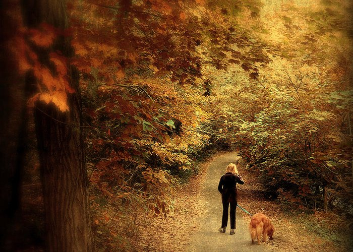 Nature Greeting Card featuring the photograph Autumn Stroll by Jessica Jenney