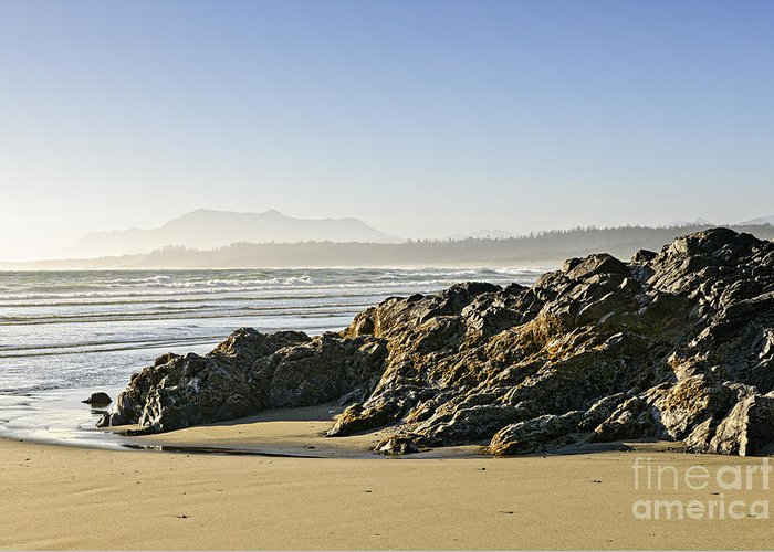 Pacific Greeting Card featuring the photograph Coast Of Pacific Ocean On Vancouver Island by Elena Elisseeva