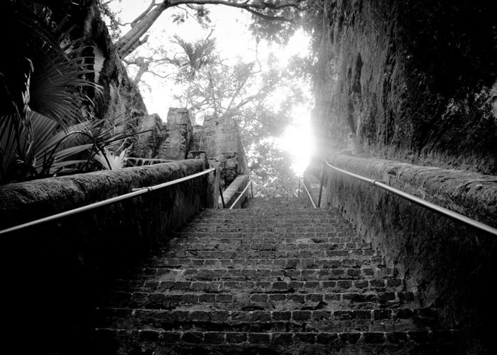 the Queen's Staircase Is One Of Bahamas Vital Historical Highlights. This Limestone Staircase Was Built By Slaves To Honor Queen Victoria's Help In The Abolition Of Slavery In The Bahamas. Greeting Card featuring the photograph The Queen's Staircase by Damion Lawrence