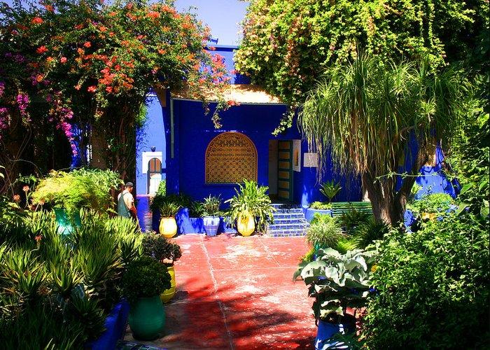 Majorelle Garden Greeting Card featuring the photograph Majorelle Garden Marrakesh Morocco by Ralph A Ledergerber-Photography