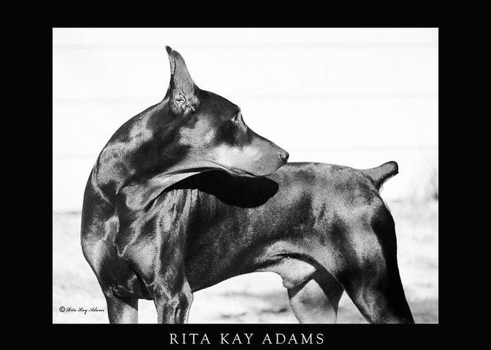 Doberman Greeting Card featuring the photograph Watchful by Rita Kay Adams