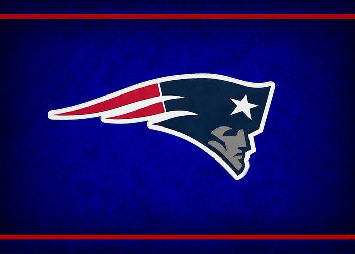 Patriots Greeting Card featuring the photograph New England Patriots by Joe Hamilton