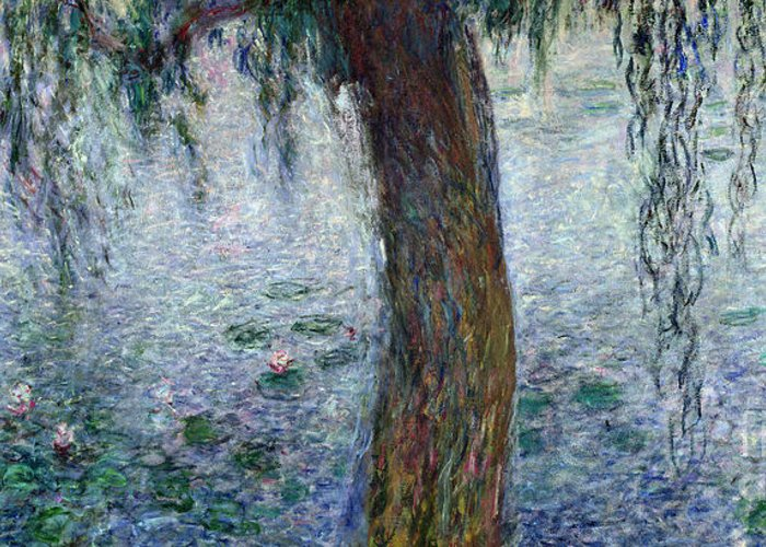 Impressionist Greeting Card featuring the painting Waterlilies Morning With Weeping Willows by Claude Monet