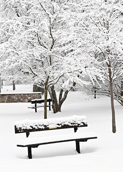 Winter Greeting Card featuring the photograph Winter Park by Elena Elisseeva