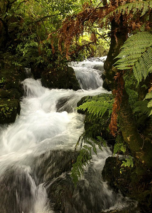 Water Greeting Card featuring the photograph Waterfall by Les Cunliffe