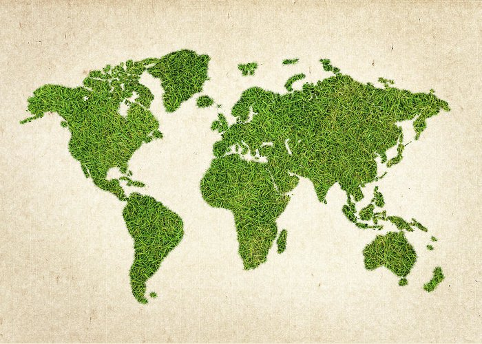 Africa Greeting Card featuring the photograph World Grass Map by Aged Pixel