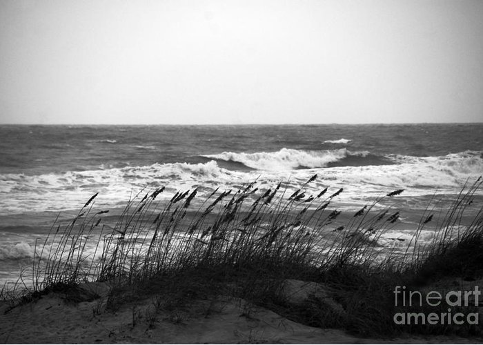 Waves Greeting Card featuring the photograph A Gray November Day At The Beach by Susanne Van Hulst