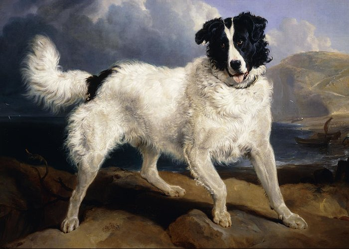 1824 Greeting Card featuring the painting A Portrait Of Neptune by Sir Edwin Landseer