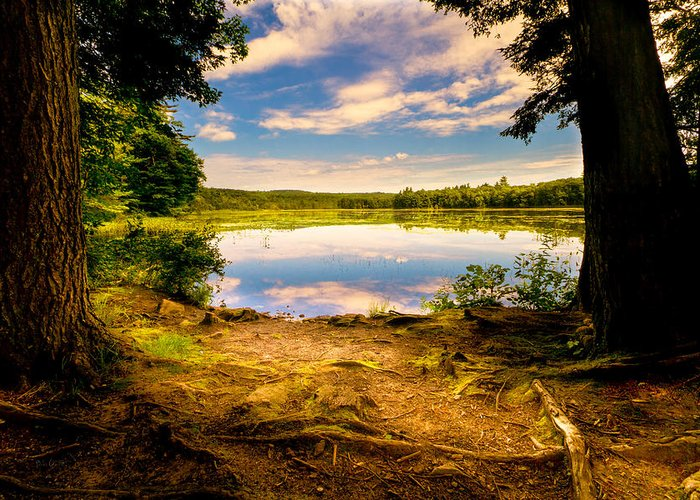 Landscape Greeting Card featuring the photograph A Secret Place by Bob Orsillo