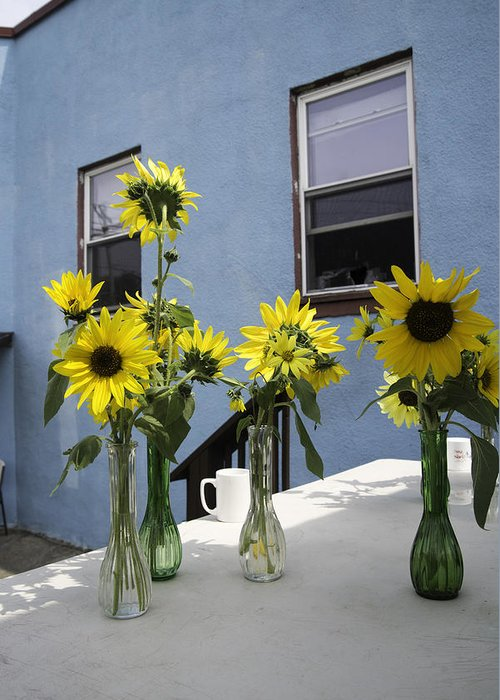 Sunflower Greeting Card featuring the photograph A Sunny Day by Michael Glenn