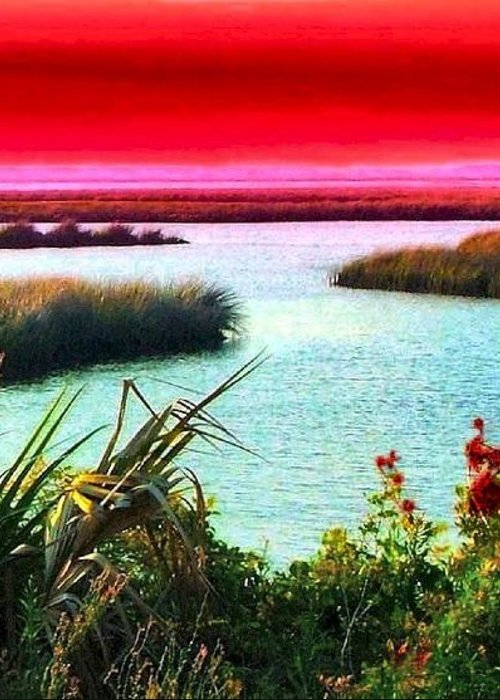 Crimson Greeting Card featuring the photograph A Sunset Crimsoned by Julie Dant