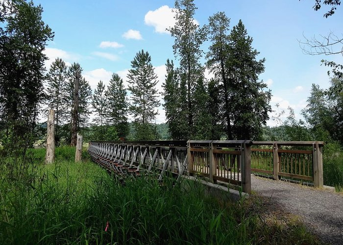 Steigerwald National Wildlife Refuge Greeting Card featuring the photograph A Trail's Footbridge by Lizbeth Bostrom