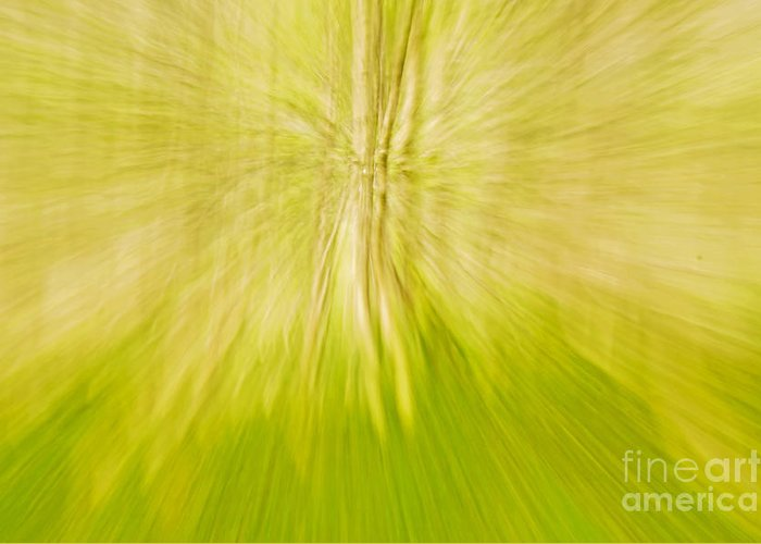 Abstract Greeting Card featuring the photograph Abstract Nature by Gry Thunes