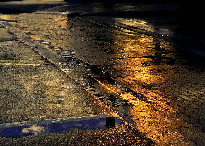 Street Greeting Card featuring the photograph After The Rain by Laura Fasulo