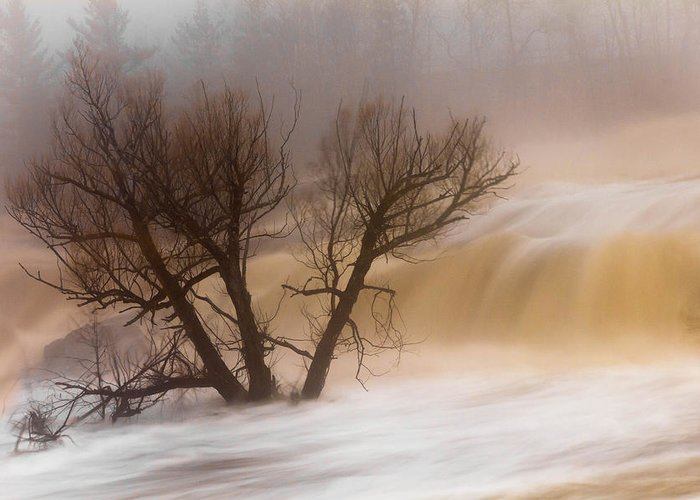 against The Current st. Louis River jay Cooke thomsen Reservoir spring Tree long Exposure spring Melt fog mist nature river mary Amerman Greeting Card featuring the photograph Against The Current by Mary Amerman