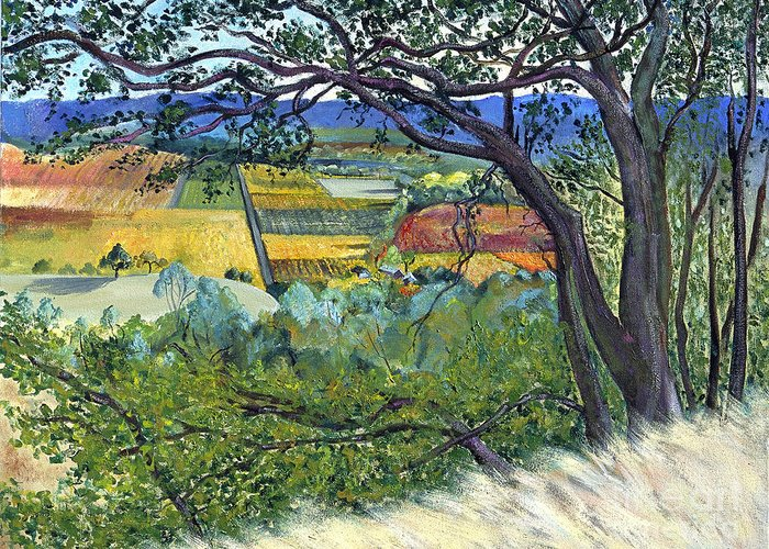 California Landscape Painting Greeting Card featuring the painting Alexander Valley Vinyards by Asha Carolyn Young