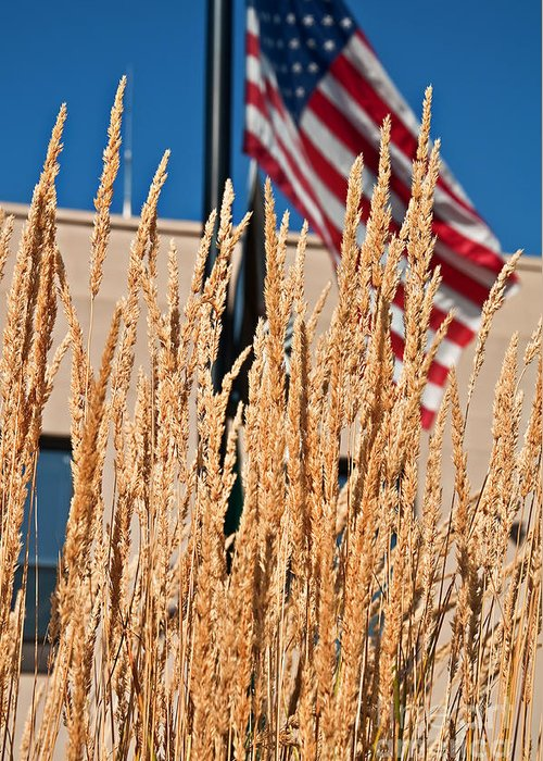 Stalks Of Grain Greeting Card featuring the photograph Amber Waves Of Grain And Flag by Valerie Garner