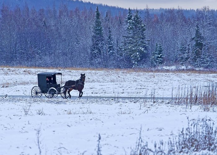 Barn Greeting Card featuring the photograph Amish Carriage by Jack Zievis