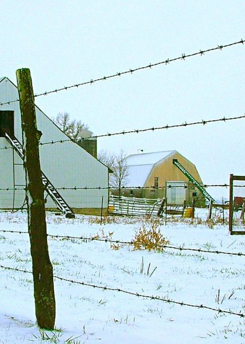 Amish Greeting Card featuring the photograph Amish Farm In Winter by Julie Dant