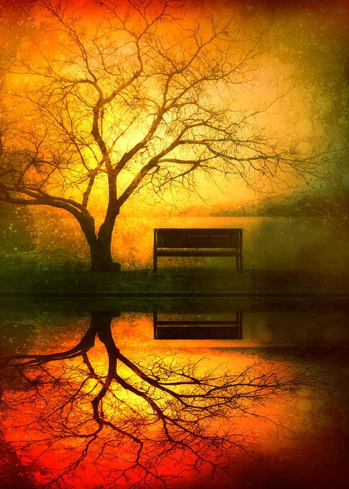 Bench Greeting Card featuring the photograph And I Will Wait For You Until The Sun Goes Down by Tara Turner