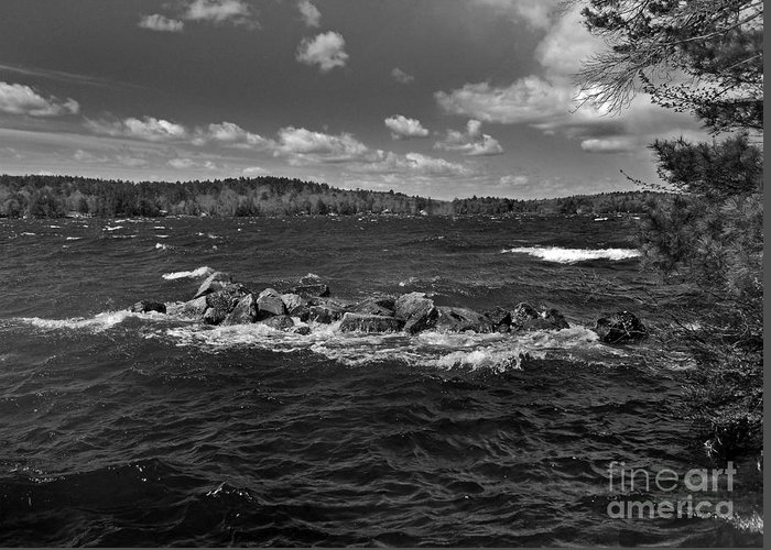 Scenic Tours Greeting Card featuring the photograph Angry by Skip Willits