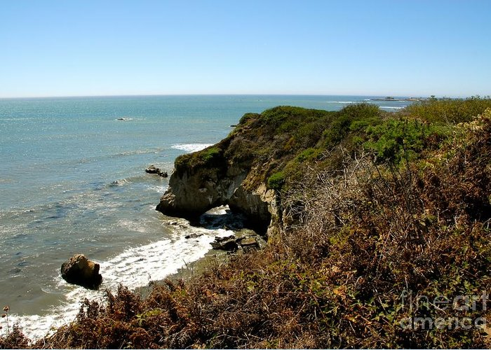 Pacific Greeting Card featuring the photograph Ano Nuevo by Lisa Schafer