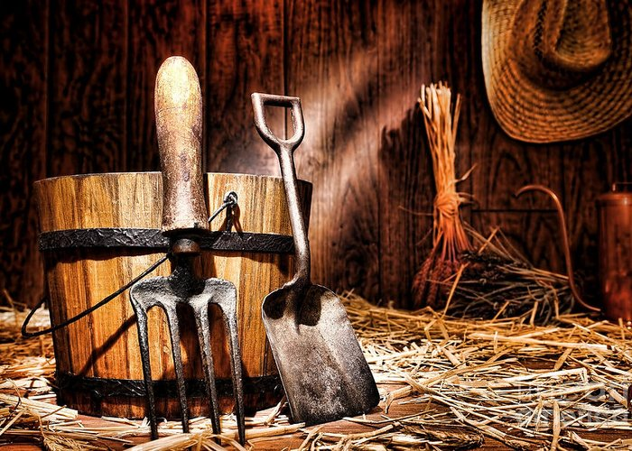 Gardening Greeting Card featuring the photograph Antique Gardening Tools by Olivier Le Queinec