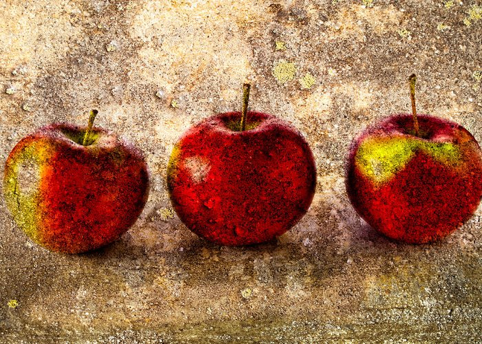 Apple Greeting Card featuring the photograph Apple by Bob Orsillo