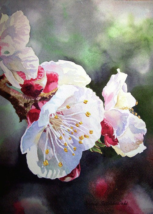 Apricot Greeting Card featuring the painting Apricot Flowers by Irina Sztukowski
