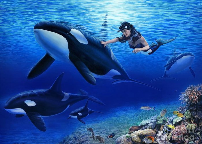 Mermaid Greeting Card featuring the painting Aquaria's Orcas by Stu Shepherd