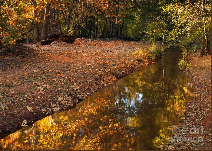 Autumn Greeting Card featuring the photograph Arizona Autumn Reflections by Mike Dawson