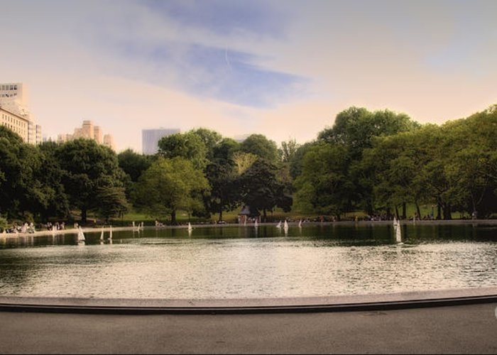 Pond Greeting Card featuring the photograph Around The Central Park Pond by Madeline Ellis
